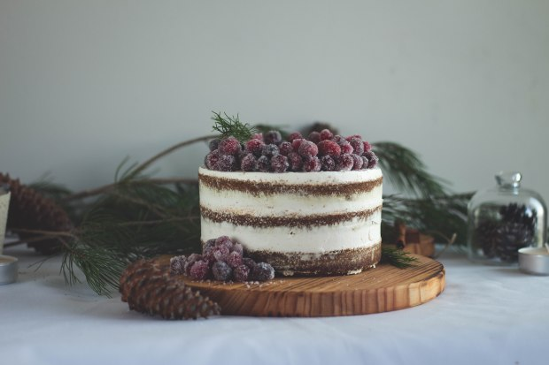 Gingerbread cake7