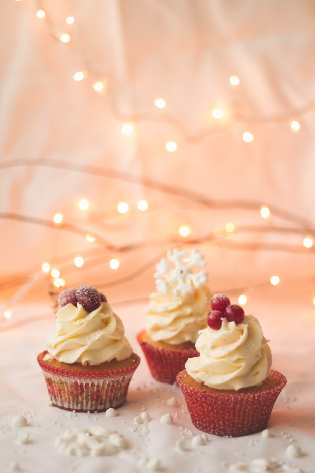 Orange Cranberry Redcurrants Cupcakes10