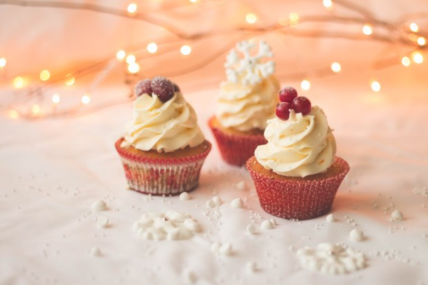 Orange Cranberry Redcurrants Cupcakes11