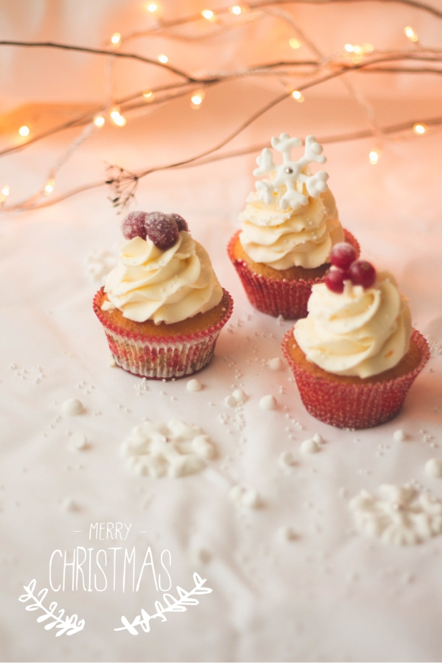 Orange Cranberry Redcurrants Cupcakes12_-01